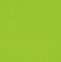 Makower fabric solid Lime Green 2000/G45